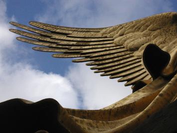 Angel_wing_2