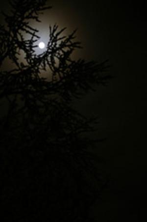Winter_solstice_moon_1